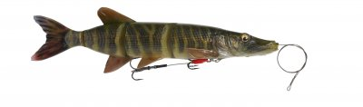 61788_25cm_110g_01-Striped_Pike_